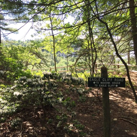 Mohonk Mountain House: Great hiking!