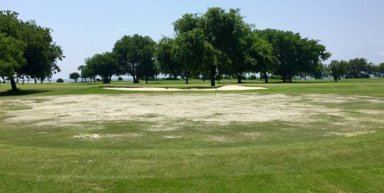 Patriots Point Links on Charleston Harbor: The first green...basically sand, dirt, and a few clumps of grass.