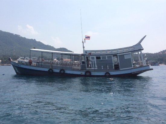 Aqua Tao