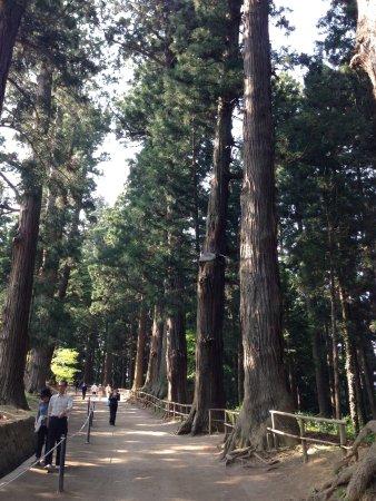 Chuson-ji Temple: photo8.jpg