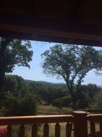Nature's Inn Bed & Breakfast: View From Gazebo