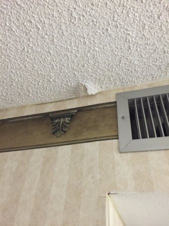 Embassy Suites by Hilton Arcadia Pasadena Area: Water damage