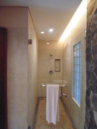 Anahata Villas & Spa Resort: Spacious shower