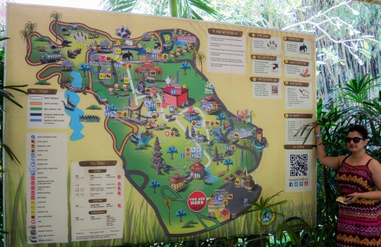 man to the zoo Picture of Bali Safari & Marine Park Gianyar