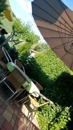 Фоньод, Венгрия: the garden