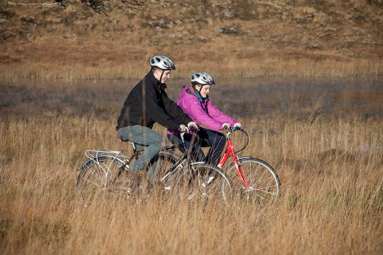 Greenway Bicycle Hire : Relaxing day out