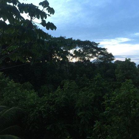 TikiVillas Rainforest Lodge: photo9.jpg