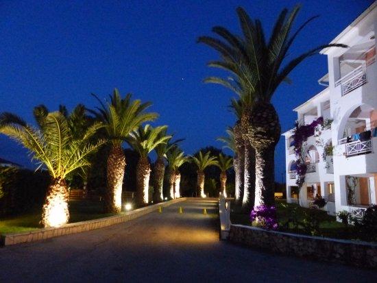 Bitzaro Palace Hotel: allée arborée de palmiers