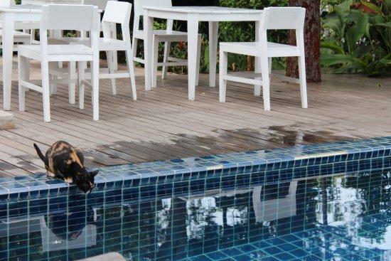 Lima Bella Resort : Lima Bella