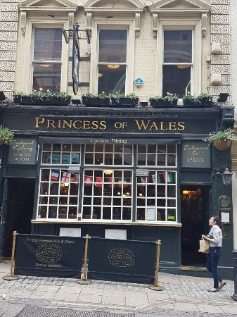 The Princess Of Wales