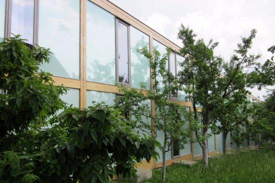Hoerger Biohotel Tafernwirtschaft : Hotel mit Apfelgarten