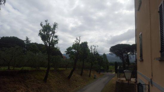 Alberoro Foto