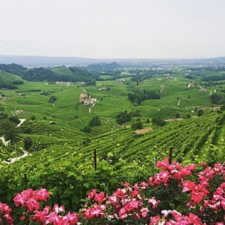 Pieve di Soligo, Italie : getlstd_property_photo