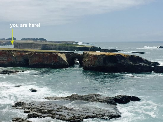 The Sea Ranch, CA: For a different perspective!