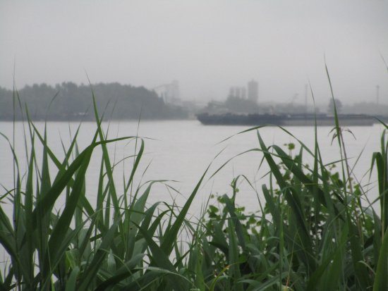 Oltenitsa shipyard as seen from Tutrakan shore