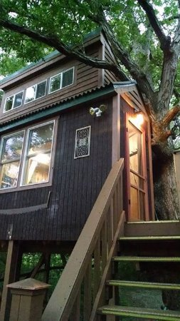 Elizabethtown, IL: White Oak Treehouse in a 200+year old Oak