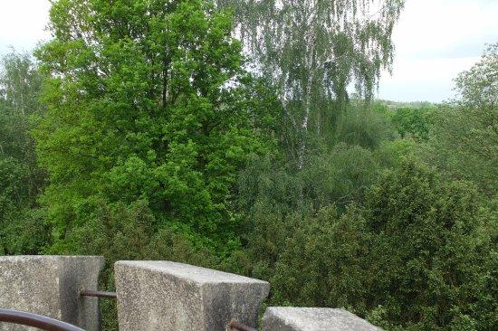 Salingburg Observation Deck