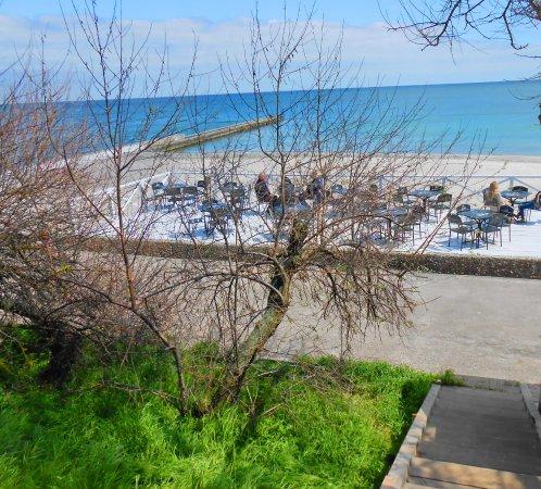 Beach Golden Shore