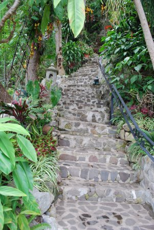 La Casa del Mundo Hotel: The stairs up to the hotel and restaurant