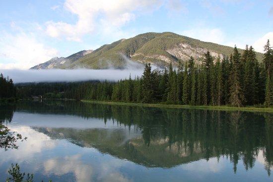 Bow View Lodge: 敷地から50m以内にあるトレイルからの朝景。朝7:30頃撮影。