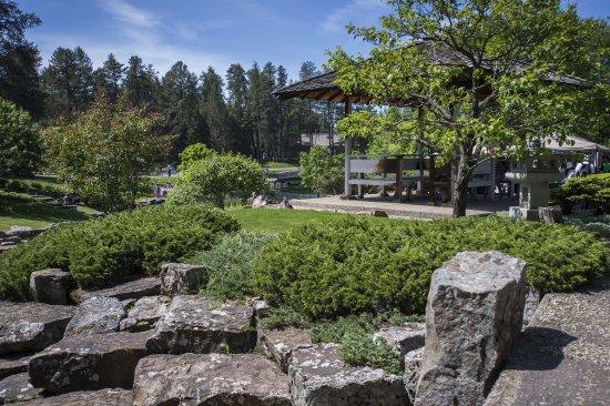 Japanese garden spring festival - Picture of University of Alberta ...