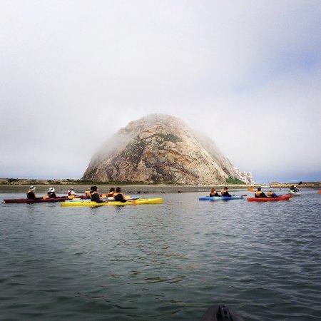 Kayak Horizons: Morro Bay Kayaking