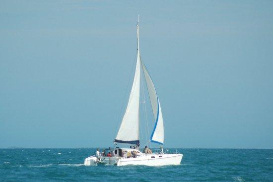 Daytripper Catamaran Charters