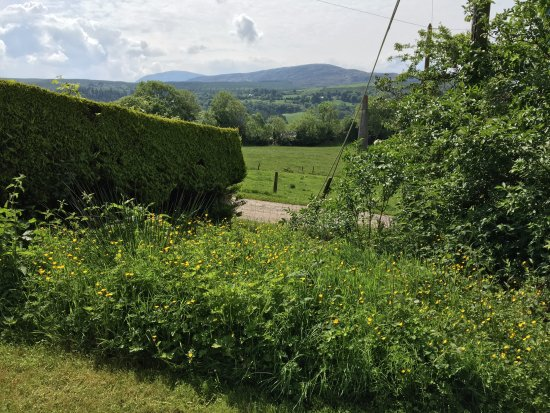 Doire Farm Cottages : View from in front of cottages