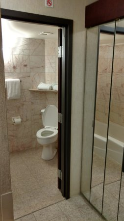 Drury Inn & Suites St. Louis Fenton: Clean Bathroom (1/3)