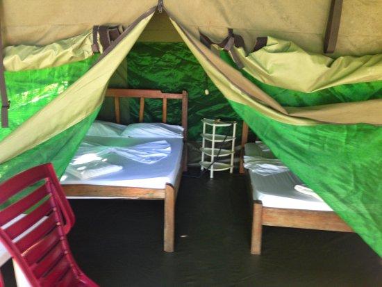 Foto de Corcovado Adventures Tent Camp