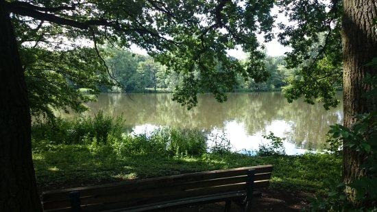 Hermann-Loens-Park