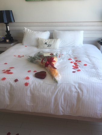 Bungalow Hotel: photo3.jpg