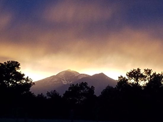 Tudor Rose Bed & Breakfast and Chalets: View of Mt. Antero from the property
