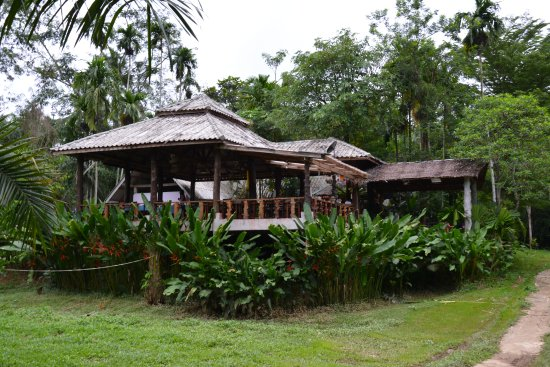 Khao Sok National Park: Local lunch