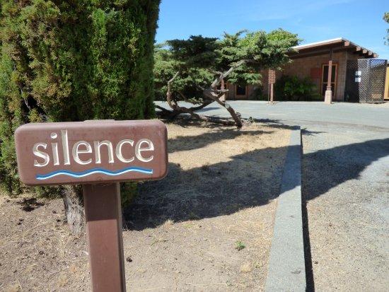New Camaldoli Hermitage: Silence