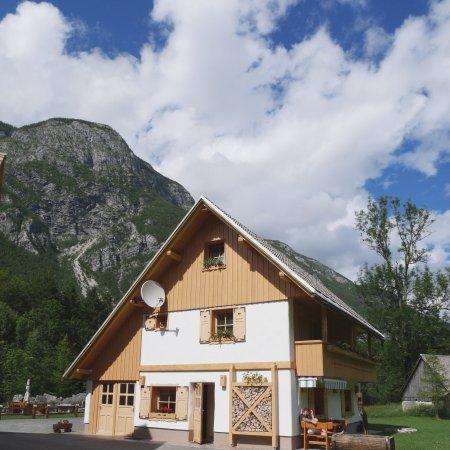 Alpik Apartments at Lake Bohinj : photo4.jpg