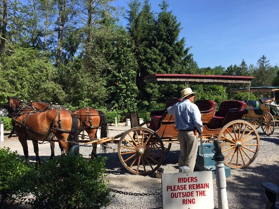 The Greenbrier: carriage ride around 2.5 mile track-views of golf course & homes