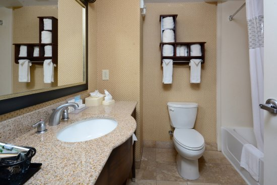 Hampton Inn & Suites Durham North I-85: Queen Room Bathroom