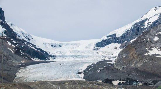 The Glacier View Inn: view of the Glacier