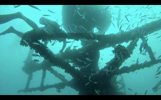 Vandenberg Wreck: superstructure/crow's nest