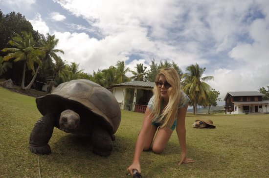 Pulau Praslin, Seychelles: photo6.jpg