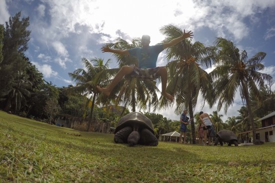 Pulau Praslin, Seychelles: photo7.jpg