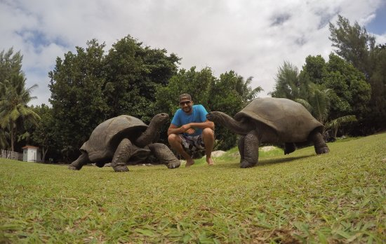 Praslin Island, Seychelles: photo8.jpg