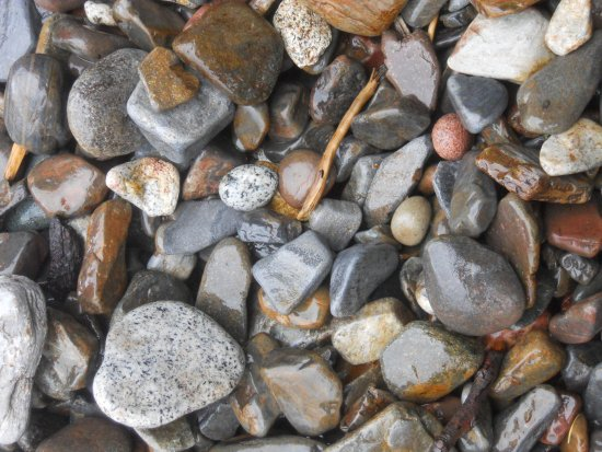 Heriot Bay, Kanada: A gray stone beach has lots of colour when you look a little closer.