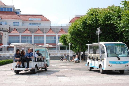 Eco-Line Tours