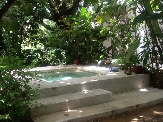 Piedra de Agua Palenque: Jacuzzi