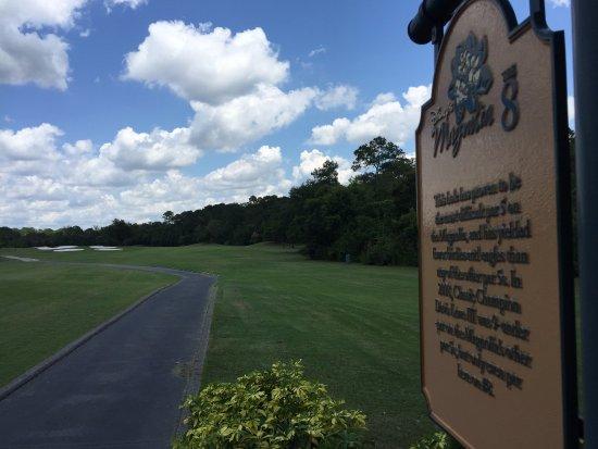 Disney's Magnolia Golf Course: beautiful view of #8