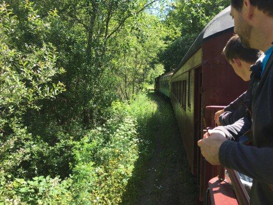 Skunk Train: photo0.jpg