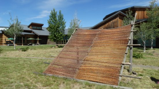 Tamastslikt Cultural Institute: Drying rack and back of museum. Also several Tepees and small sweat lodge.