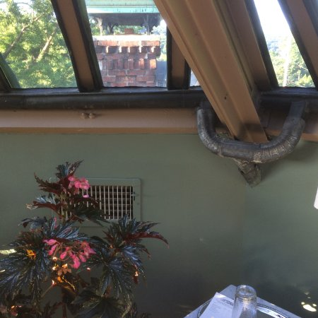 The Sayre Mansion Inn: original inside gutters in the conservatory